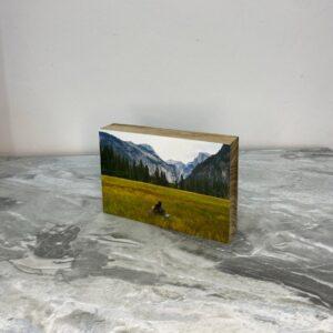 """תמונה על בלוק מעץ בגודל 10X15 ס""""מ"""